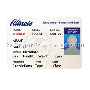 illinois drivers license test documents